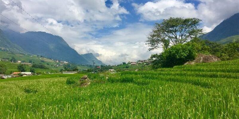 Part 4: Rice Paddy Treks & Cheating on Delilah – A Brother Abroad