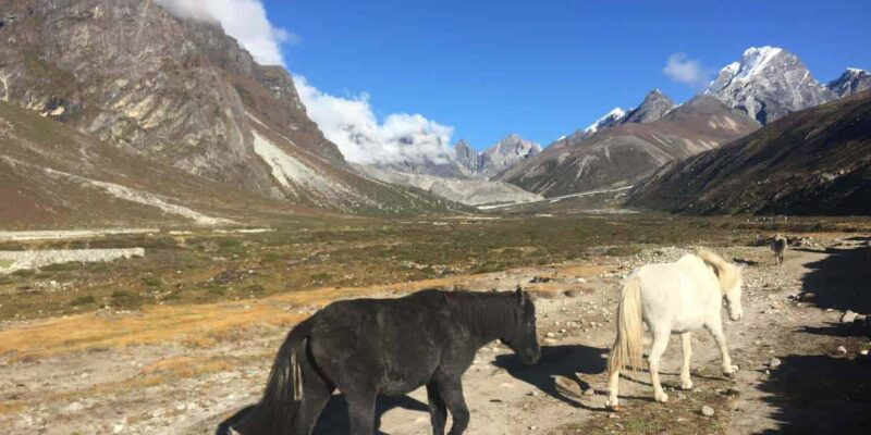 Pt 0: Why go to Everest? (Experiencing The Everest Base Camp Hike) – A Brother Abroad