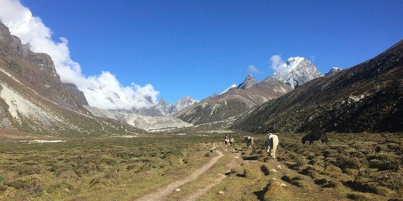 Part 6: Feeling Human: Pheriche to Gorak Shep on the Everest Base Camp Hike