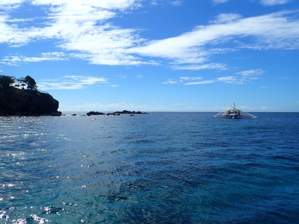Apo Island Diving & Freediving the Philippines