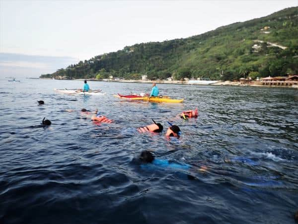 Oslob Whale Shark Price, Location, and What to Expect | ABrotherAbroad.com