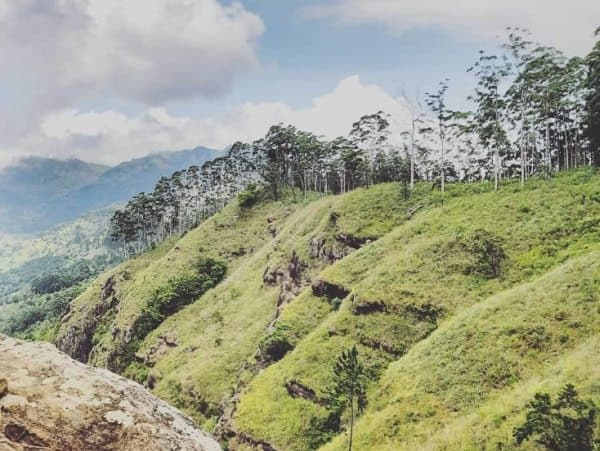 Best Places to Visit in Sri Lanka for a Real Sri Lanka Experience | What to See, Best Beaches, Best Experiences, and More