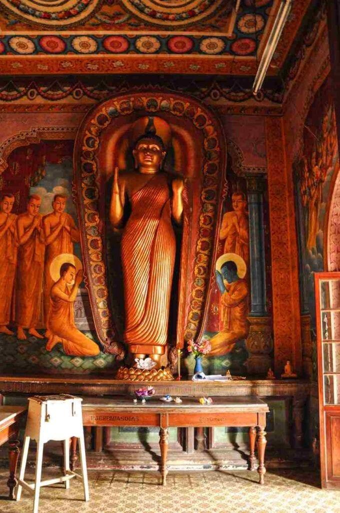 11 Essential Sri Lanka Travel Tips